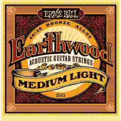 Ernie Ball 2003
